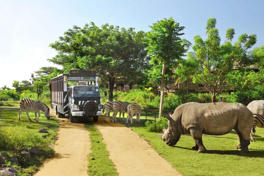 Bali-Safari-Marine-Park-enjoyable-in-Gianyar-Bali-Indonesia-39