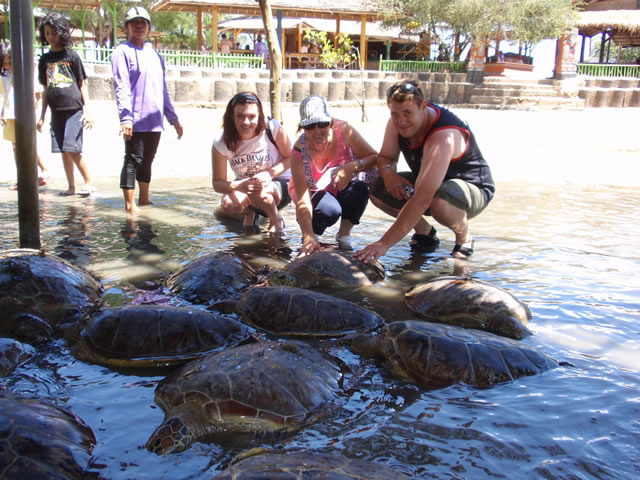 Turtle-Island-with-Glass-bottom-boat-trip-Bali-44