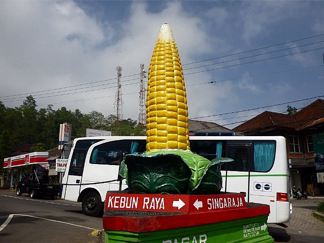 bedugul tour lovebali (14)