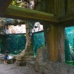 Travel_Indonesia_BaliSafariMarinePark_Aquarium2